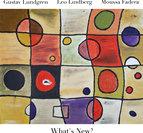 "Gustav Lundgren, Leo Lindberg, Moussa Fadera ""What's New?"""